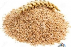 Feed Wheat Bran for sale